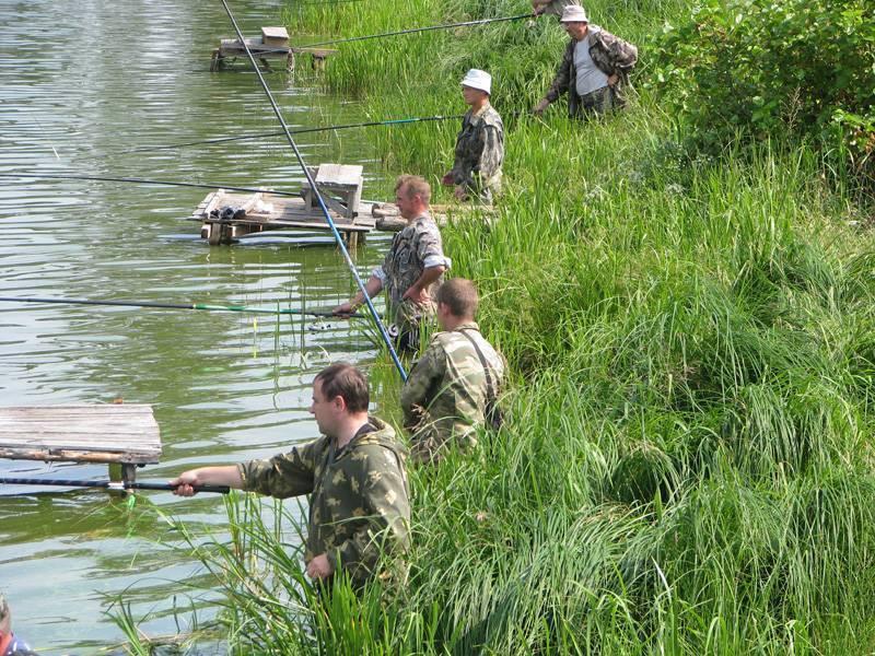 Рыбалка в московской области. отчеты рыбаков, форум