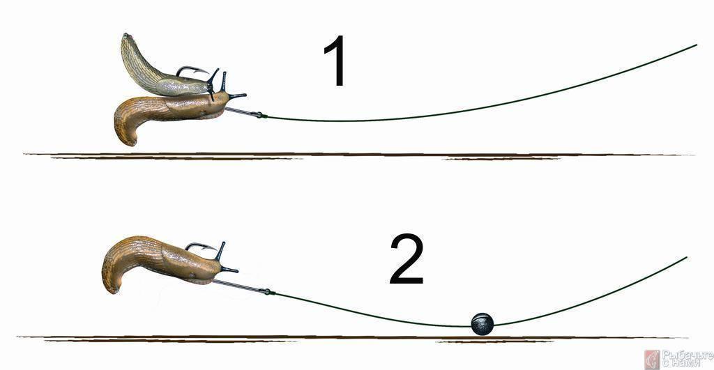 Кузнечик — главная приманка лета, которая отлично приманивает трофейную рыбу