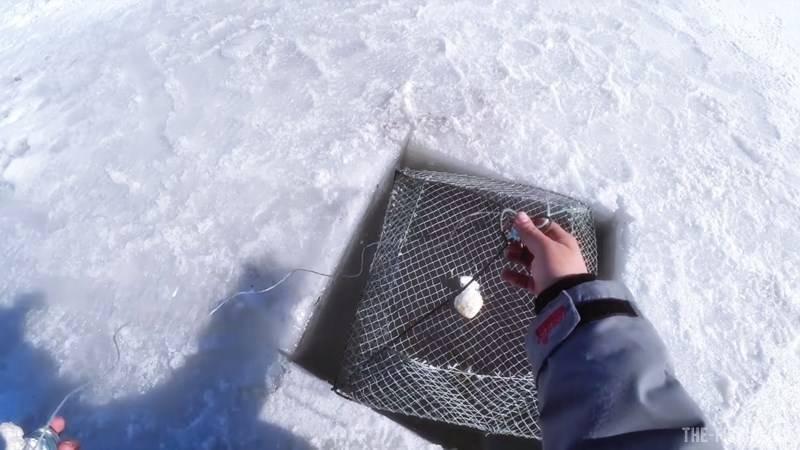 Ловля раков зимой: когда и как это лучше делать