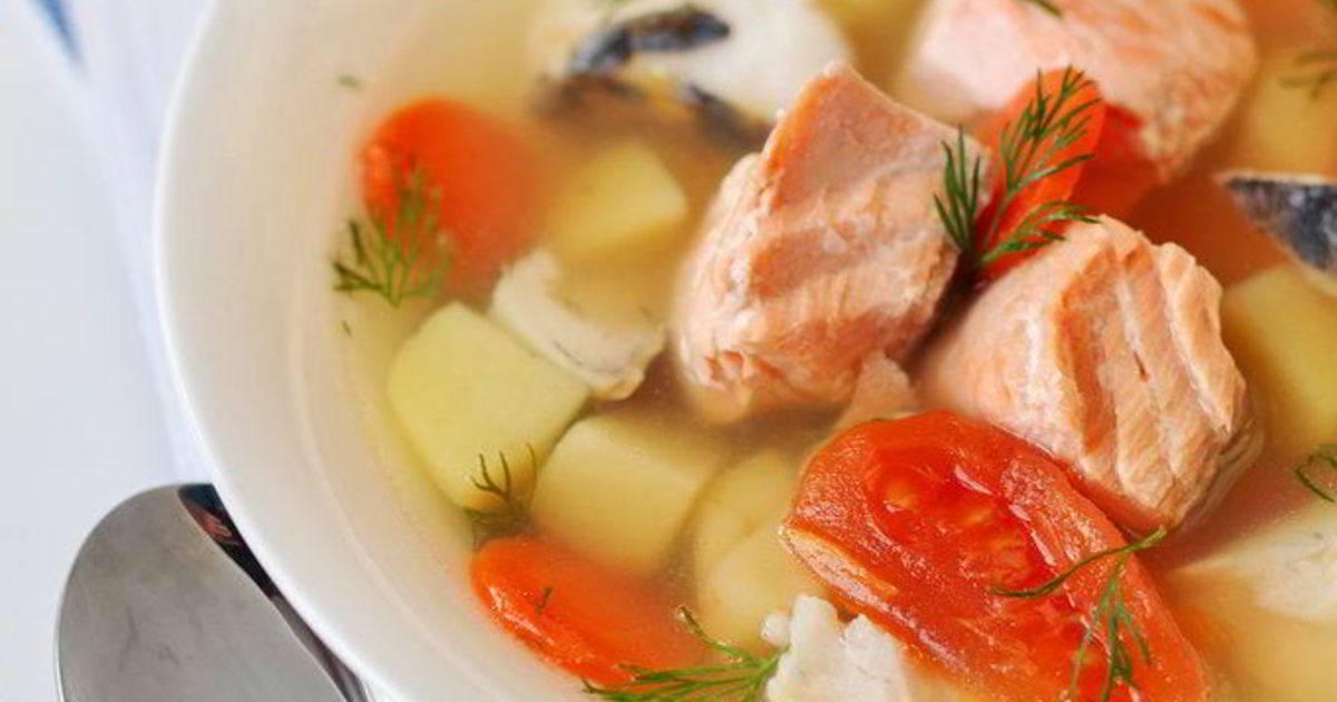 Готовим уху из сёмги: домашние рецепты царского блюда