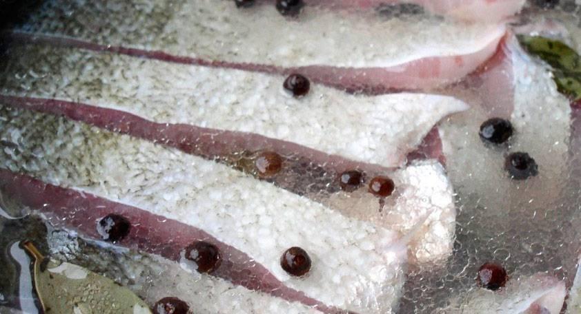 Как засолить толстолобика: способы вкусно замариновать рыбу по-домашнему