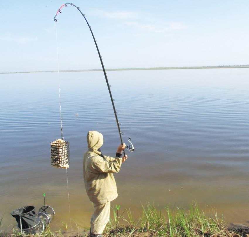 Ловля карася в июне: снасти, насадки и прикормка, тонкости ловли