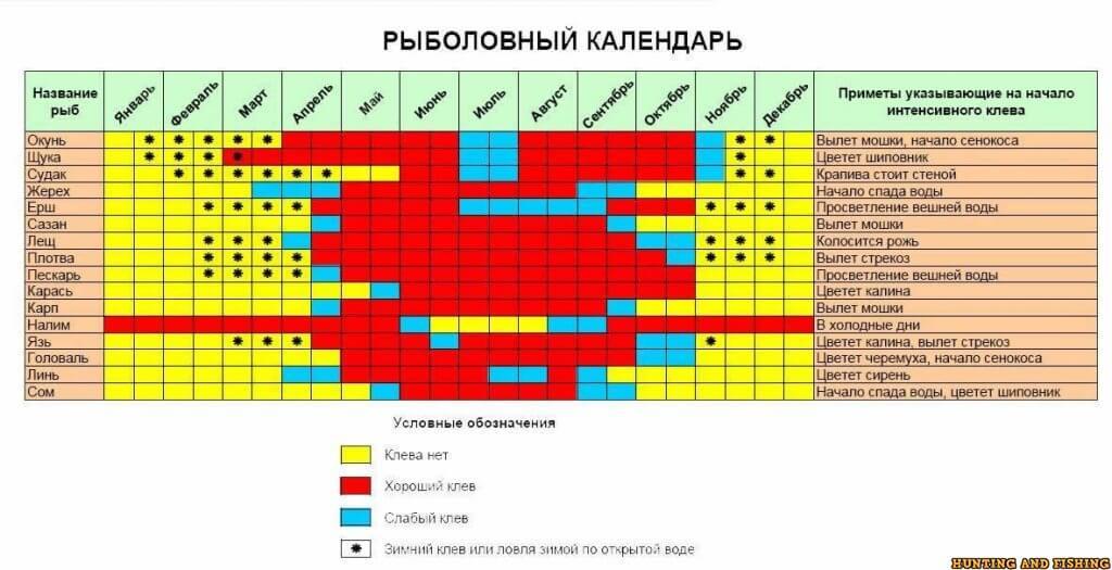 Бийск - календарь рыболова. рыбалка в бийске, график клёва рыбы.