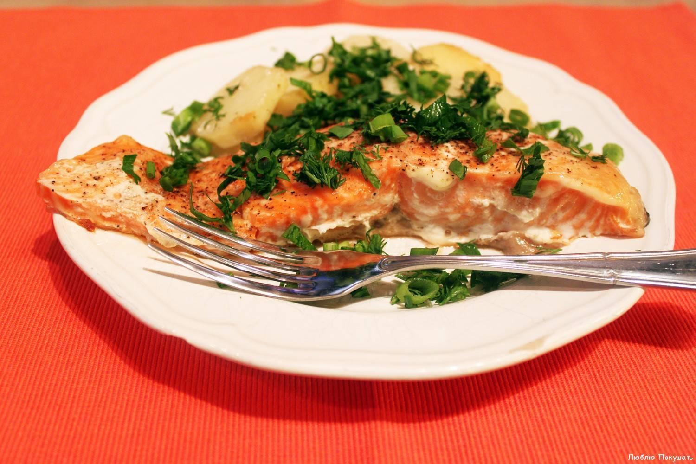 Что можно приготовить из красной рыбы рецепты. способы приготовления красной рыбы