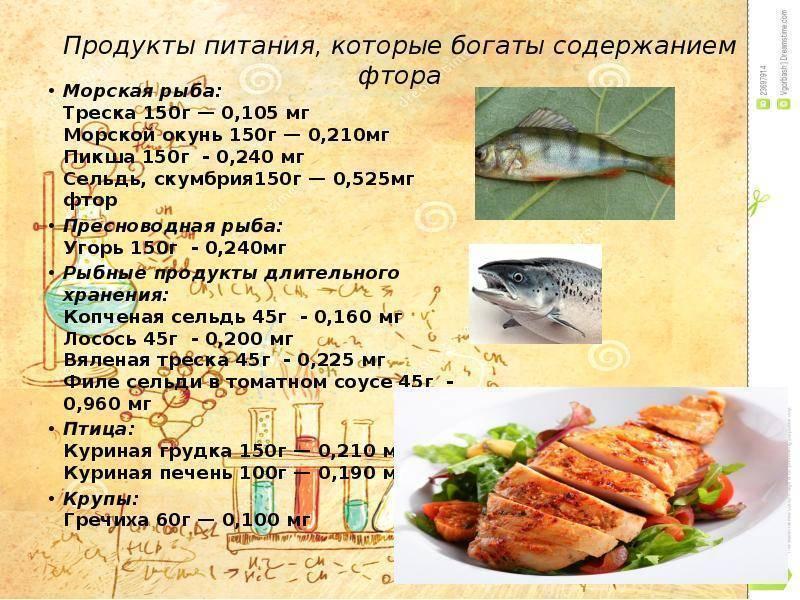 Морской окунь: польза и вред для организма, калорийность рыбы на 100 грамм