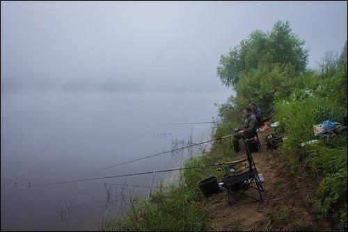 Топ 30 — реки новгородской области