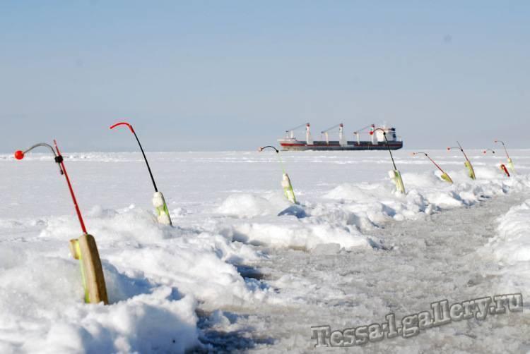Ловля корюшки зимой - секреты, снасти, наживки - на рыбалке!