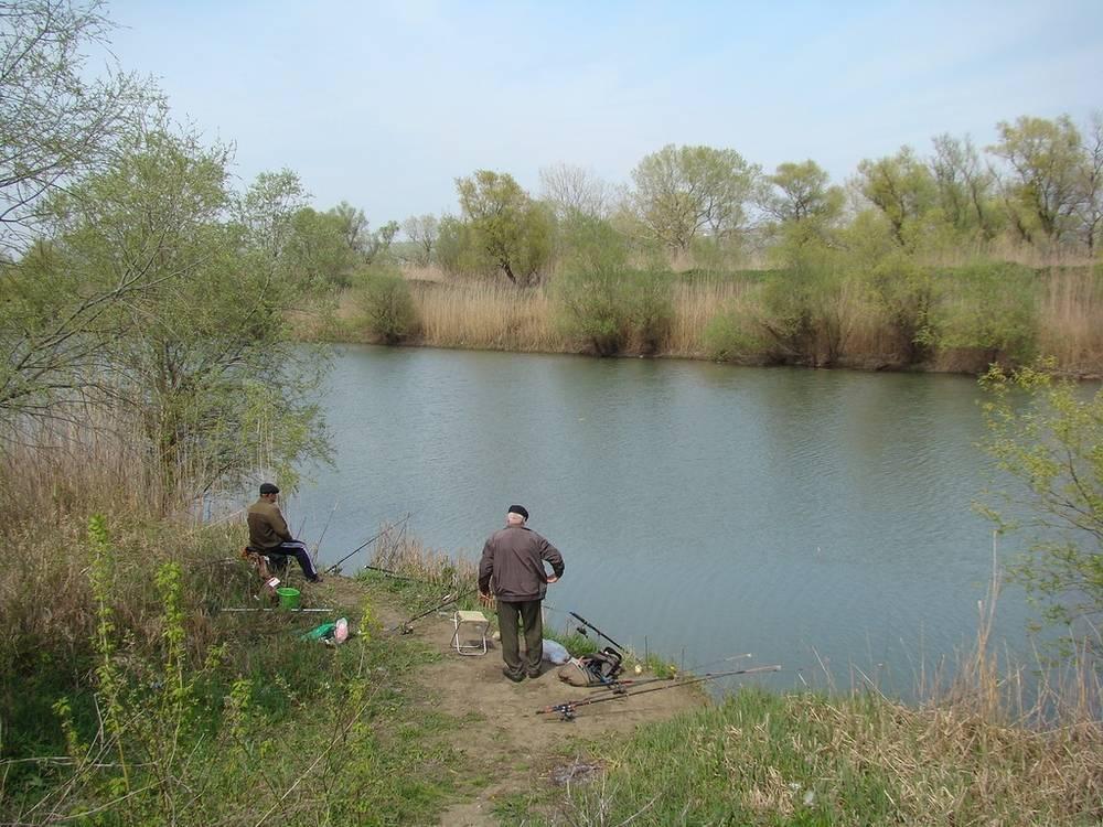 Рыбалка на реке кубань — рыбные места, снасти, приманки