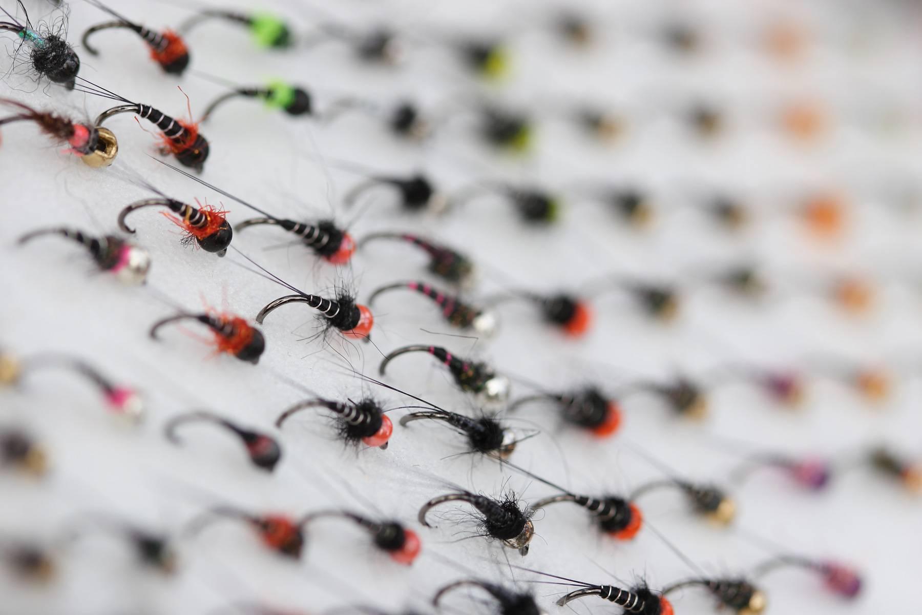 Донные снасти для ловли рыбы: 10 самых уловистых донных удочек