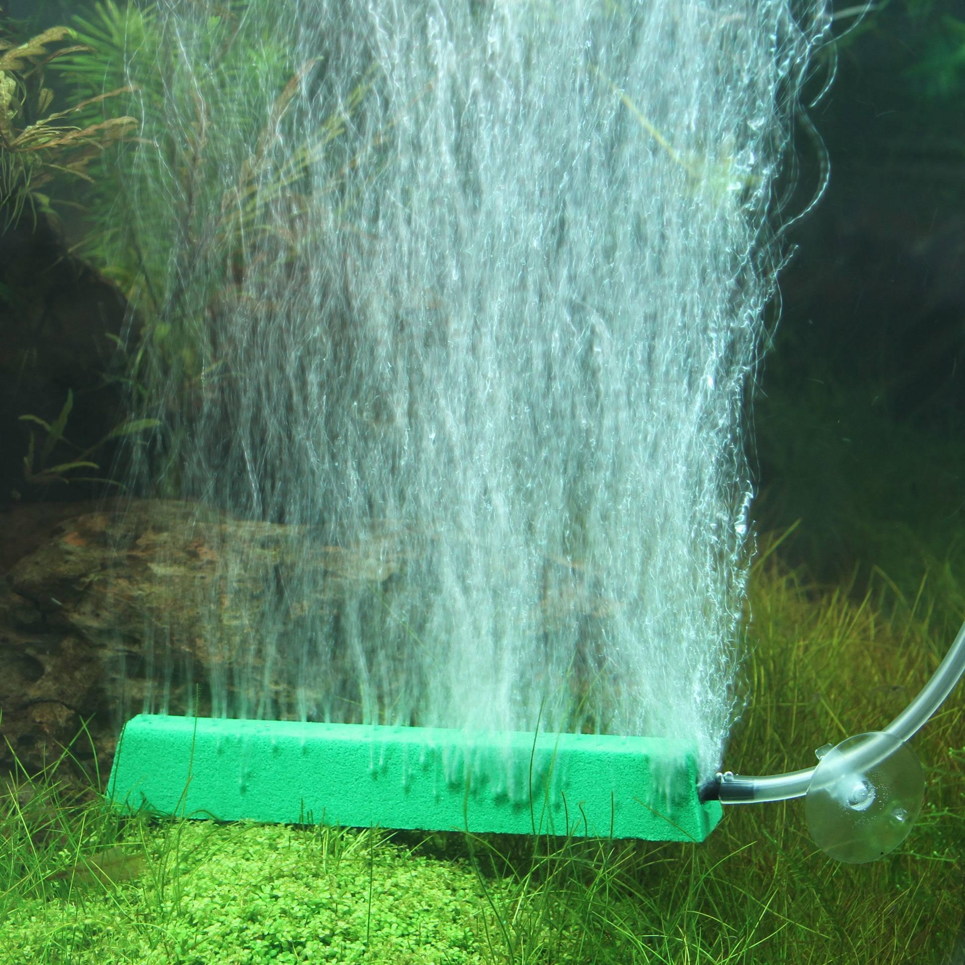 Рыбки без кислорода в аквариуме, которым он не нужен и они могут без него жить: породы рыб, их описание и содержание