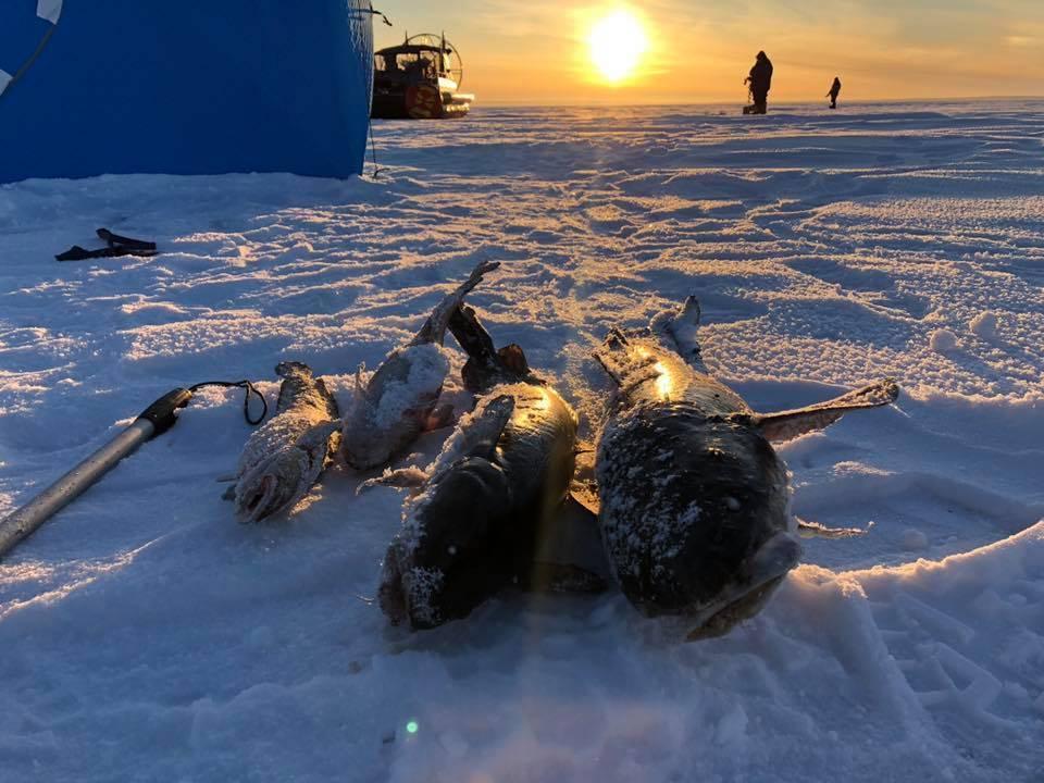 Рыбалка осенью в карелии: цены, фото, видео и особенности осенней рыбалки | база отдыха «сорола»