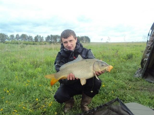 Рыбалка в тульской области 2020   платная рыбалка, на оке, реки, на упе, запрет