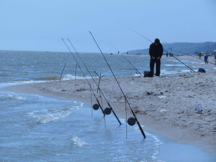 ✅ рыбалка на азове - https://xn----7sbeepoxlghbuicp1mg.xn--p1ai/