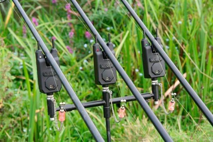 Электронные сигнализаторы поклевки для фидера и карповой ловли - лучшие модели
