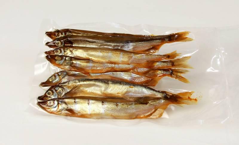 Мойва (уёк) – описание рыбы, виды, где обитает, пища, фото