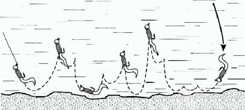 Ловля окуня на спиннинг: оснастки, приманки, техника ловли