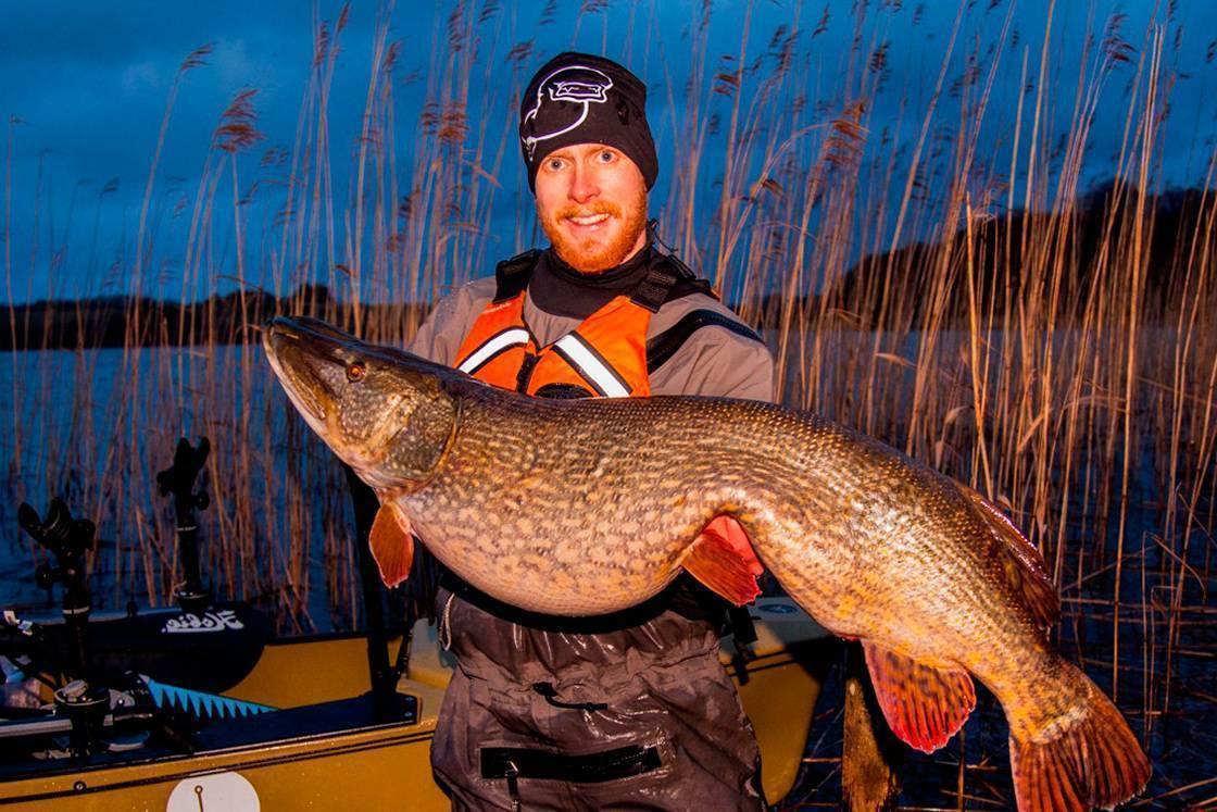 Щуки-рекордсмены. самая большая щука в мире! | тимошин рыбалка | яндекс дзен