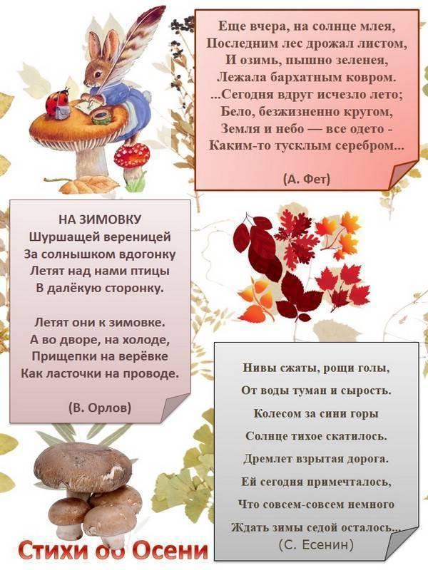 Стихи про осень: короткие и красивые стихотворения об осени для дошкольников