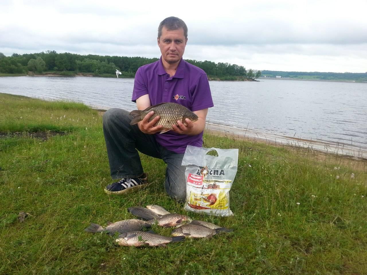 Рыбалка в чувашии: платная и бесплатная, в чебоксарах и на суре, на волге и в карамышево, в чебоксарском водохранилище, рыболовные базы и другие места