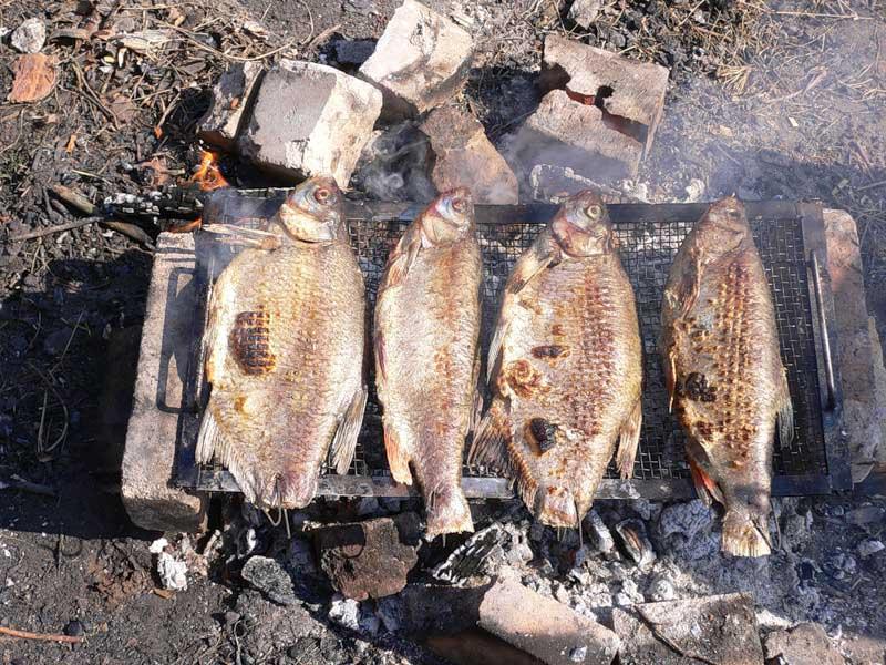 Фидер в октябре на вятке - про рыбалку