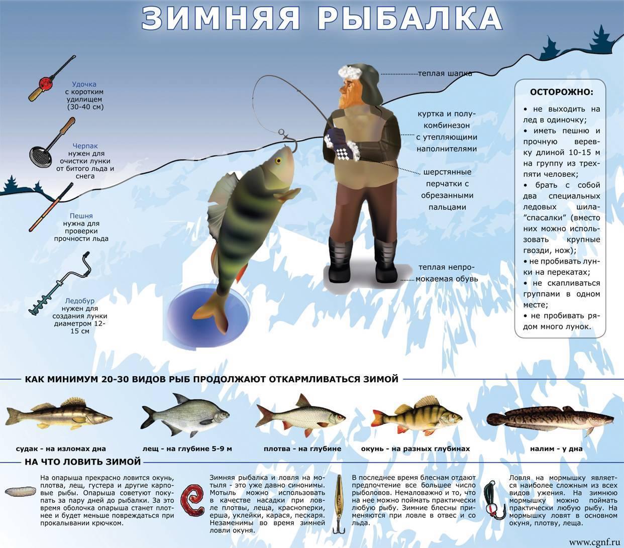 Рыбалка на кольском полуострове куда поехать