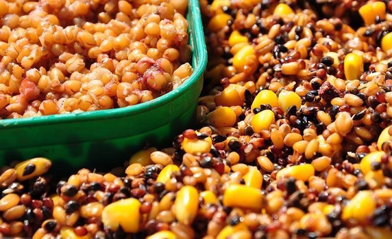 Как варить пшеничную кашу на воде в кастрюле: пропорции и рецепт