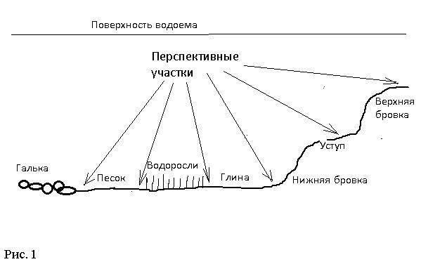 Как определить дно водоёма, его структуру и глубину в определенной точке