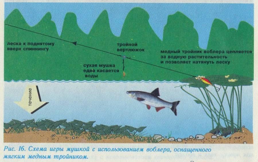 Эффективные способы ловли хариуса весной – рыбалке.нет