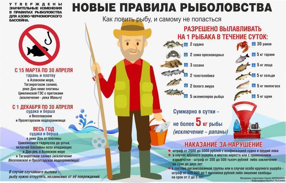 Пять погодных факторов влияющих на клёв и ваш улов рыбы фото видео