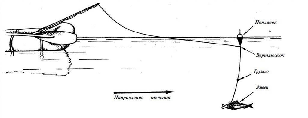 Ловля окуня на поплавок: какие особенности и как правильно?