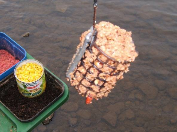 Ловля плотвы на поплавочную удочку – снасти, прикормка, приманки