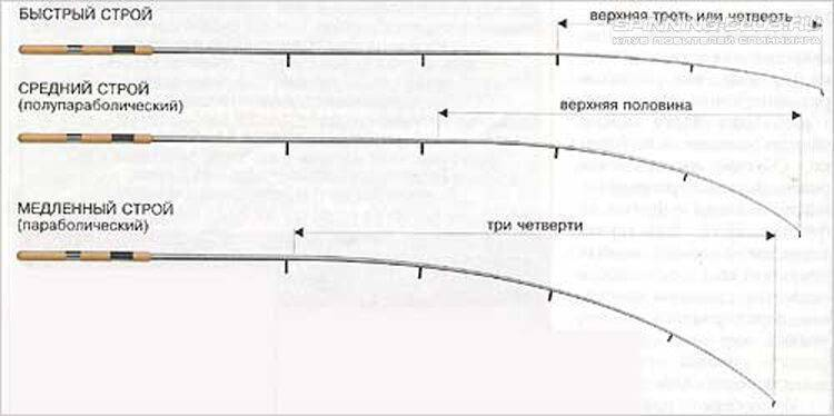 Чем отличается фидер от спиннинга? отличия фидерных удилищ от спиннинговых в эксплуатации. что лучше выбрать?