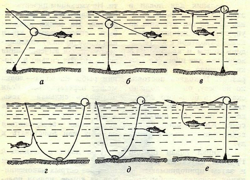 Снасти для ловли щуки: спиннинговая, донная и поплавочная на живца