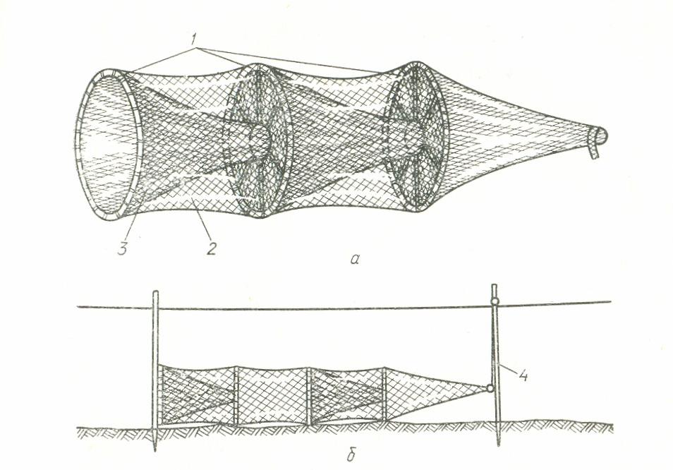 Как ловят в тунисе рыбу промысловым способом при помощи сетных ловушек (вентерей) и вертикальных ставных неводов