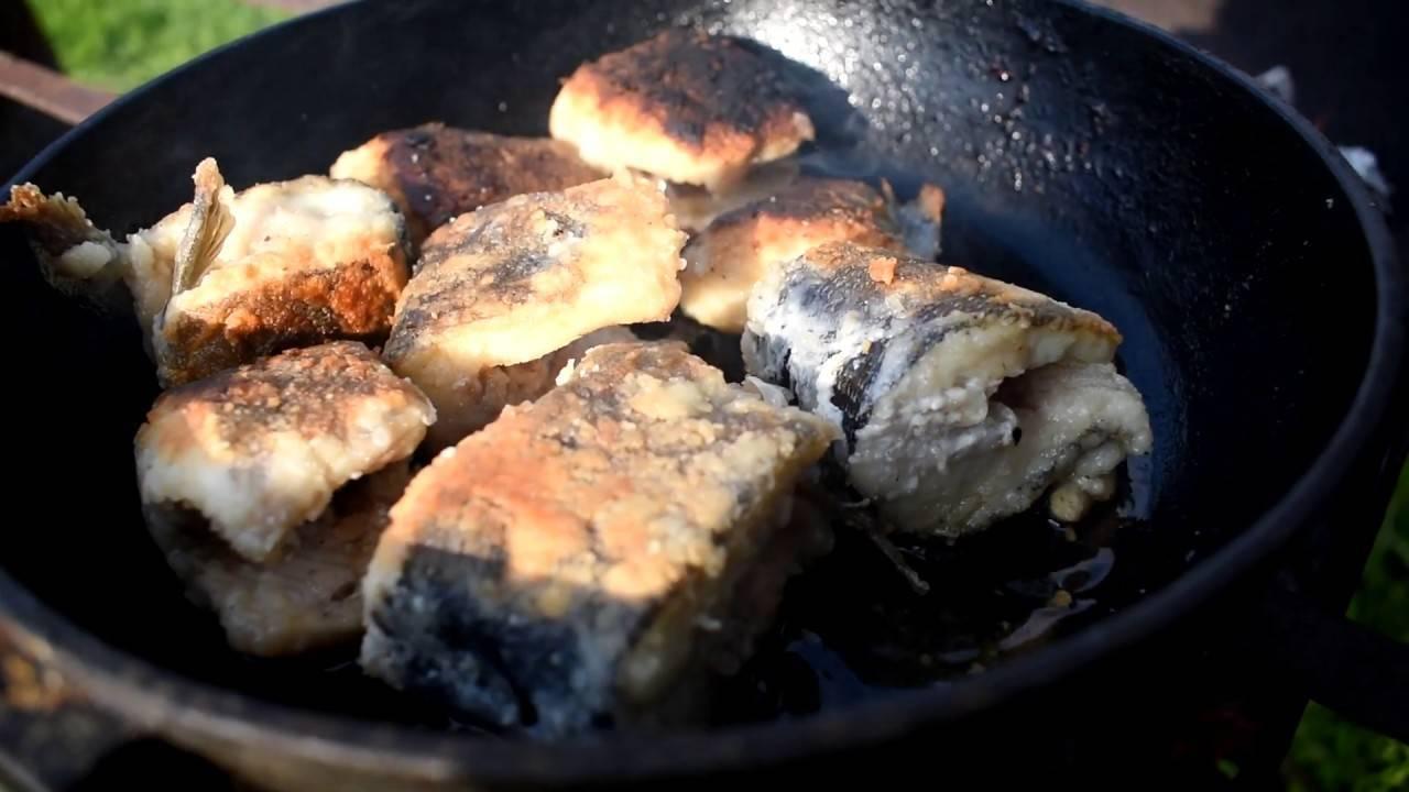 Секреты готовки щуки вкусно и быстро