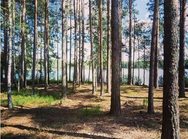 Озеро банное в башкортостане. базы отдыха, санатории, отдых на озере, развлечения, фото, отзывы, видео, отели рядом, как добраться – туристер.ру