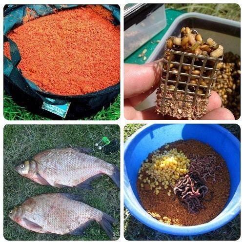 Снасти для ловли тарани - фидер и поплавная ловля весной, летом и осенью