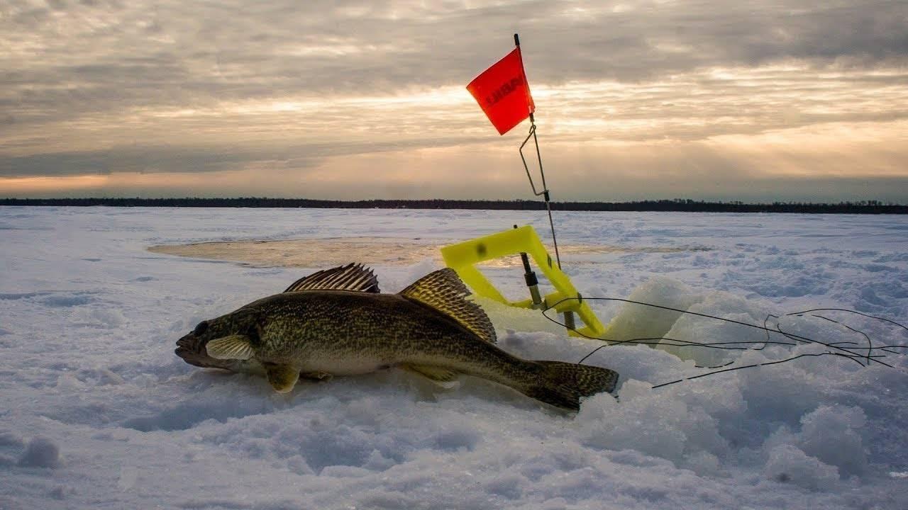 Уловистые места для рыбалки в минской области
