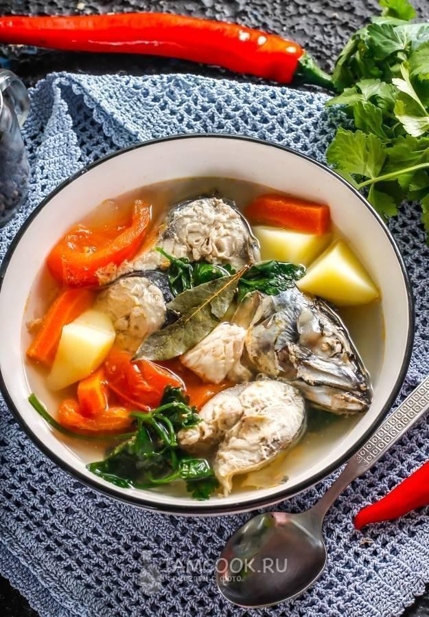 Рыбный суп со скумбрией