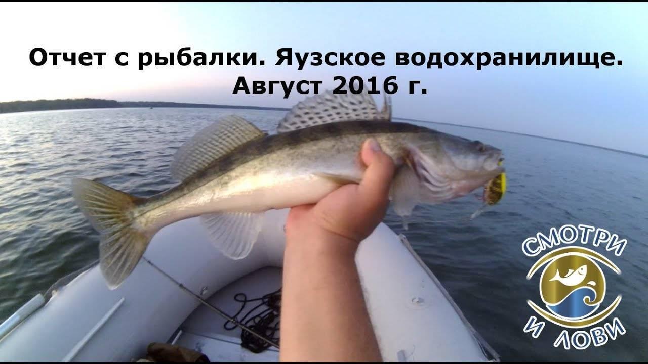 Рыбалка на яузском водохранилище: последние отзывы и фото туристов