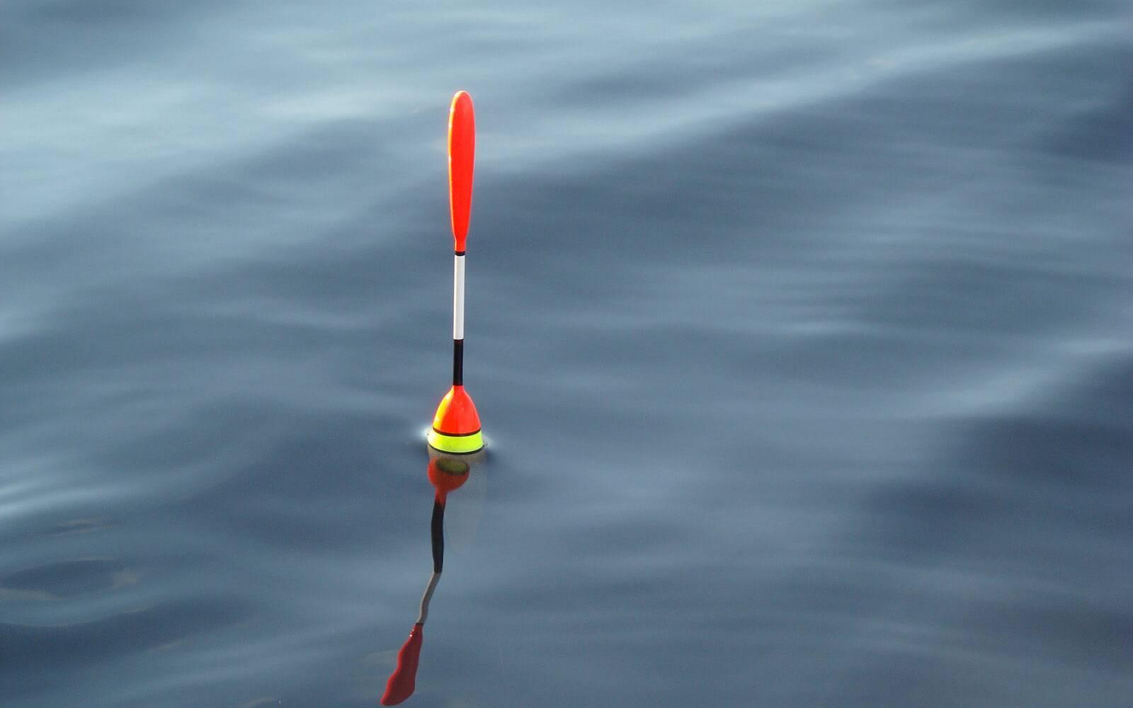 Ловля на поплавочную удочку – рыбалка на поплавок весной, летом и осенью