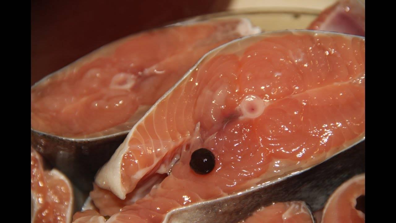 Рецепт засолки горбуши под семгу