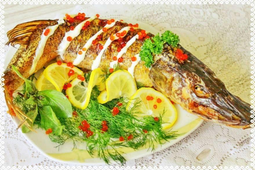 Как можно приготовить щуку: несложные рецепты вкусных блюд и правила выбора и разделки рыбы