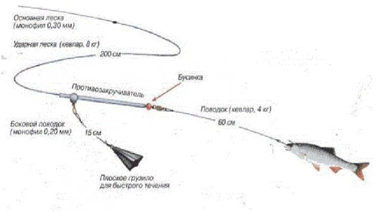 Ловля судака: способы, наживки, сезонные особенности