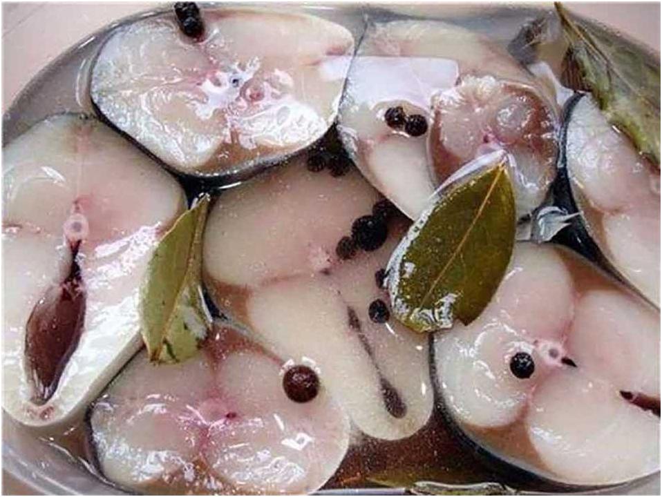 ✅ как замариновать сазана: в уксусе с луком в домашних условиях, донской с кореньями в маринаде, пошаговые рецепты, фото - tehnoyug.com