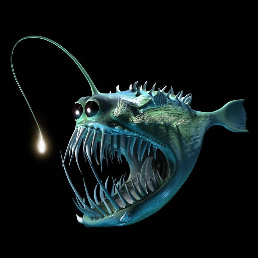 Самые глубоководные рыбы на земле: названия, описания, фото