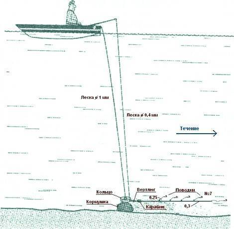 Техника ловли леща на кольцо с лодки и правильная подготовка снасти