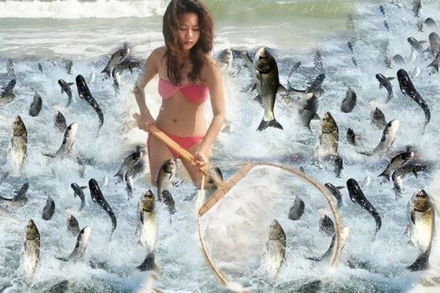 Сонник рыба ловить рыбу удочку. к чему снится рыба ловить рыбу удочку видеть во сне - сонник дома солнца