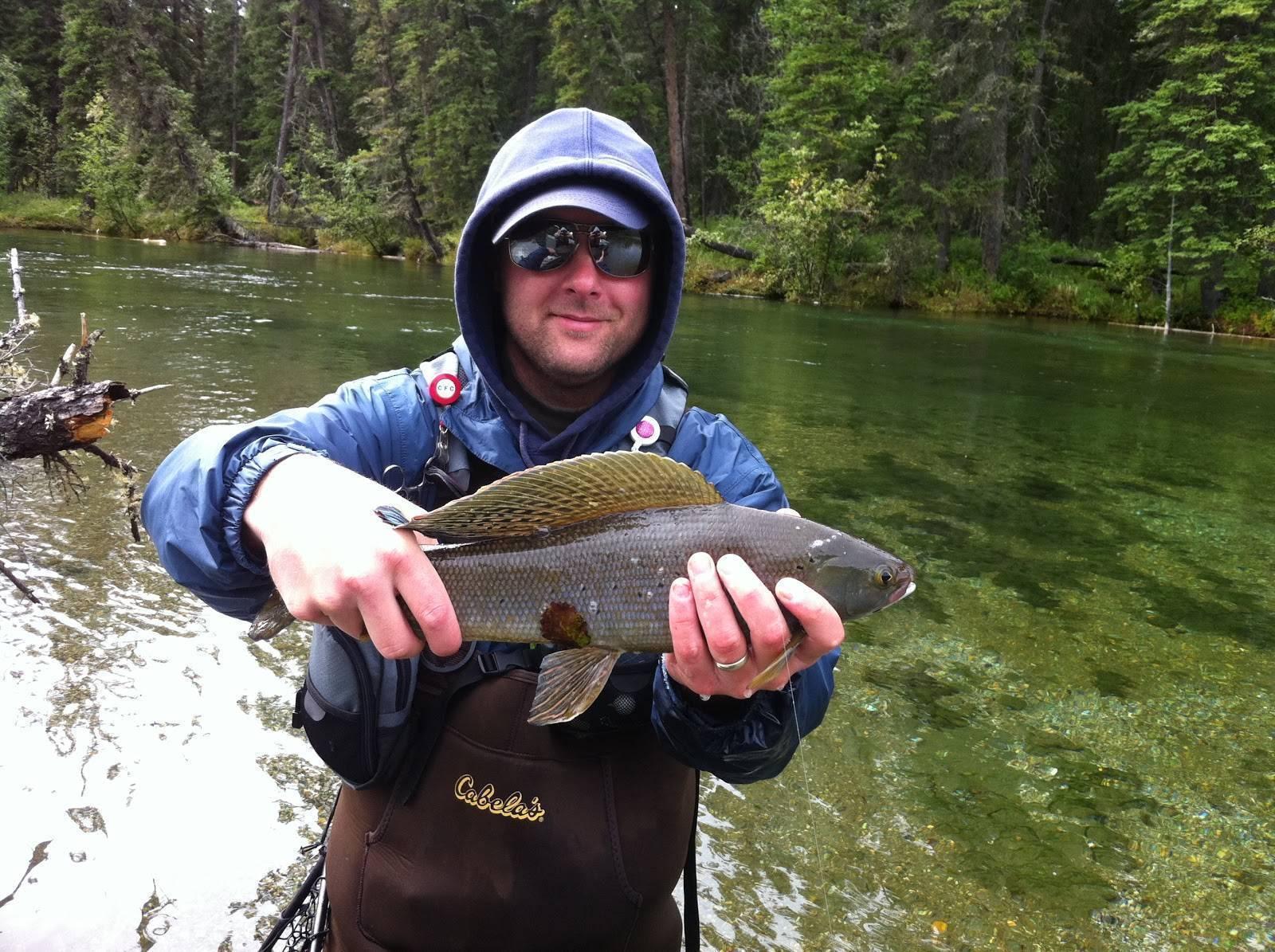 Особенности рыбалки на хариуса осенью и выбор приманок