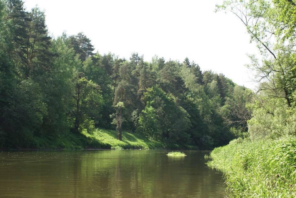 Истра (река)